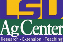 LSU AgCenter offers financial, marketing training for new farmers